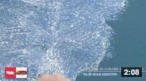 Fiocchi di colore Superbianco - BlueGold